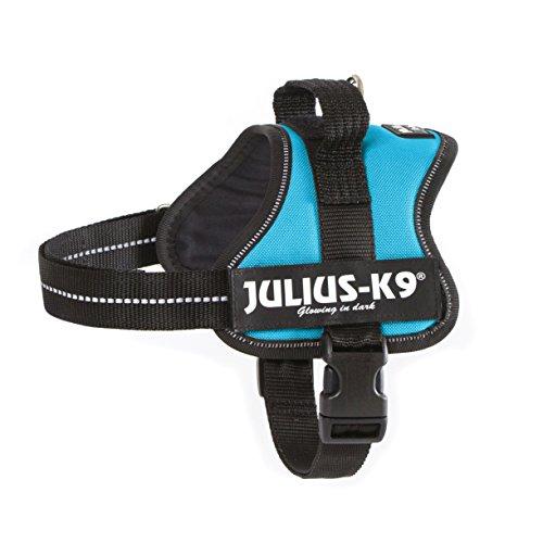 julius-k9-powerharness-size-mini-aquamarine