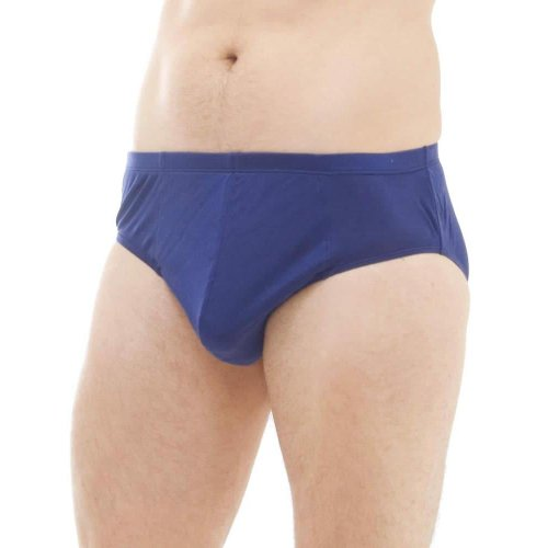 Set of 4 Silk Full Brief