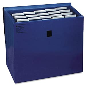 Wilson Jones ColorLife Insertable Tab Expanding File with Flap and Gripper Velcro Closure, 17 Inch Expansion, 21 Pockets, 10 x 12 Inches, Dark Blue (W23280)
