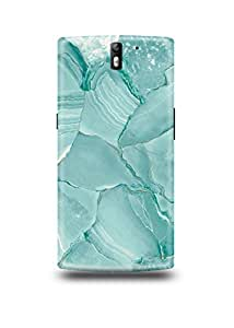 Blue Marble Oneplus One Case