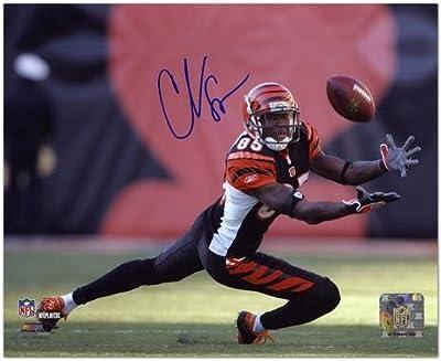 Chad Johnson Cincinnati Bengals Autographed 8x10 Photograph - Fanatics Authentic Certified - Autographed NFL Photos