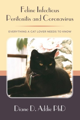 Feline Infectious Peritonitis and Coronavirus: Everything a cat lover needs to know