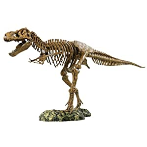 "Elenco Science Tech T-Rex Skeleton 36"" Scale Replica Model"