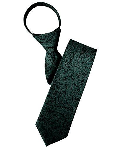 H2H Mens Comfortable Zipper Neck Tie Paisley Patterned Of Various Colors KHAKI NONE (KMANT0118) Mens Zipper Tie