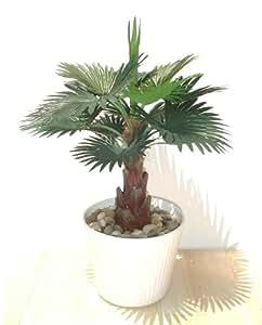 Ventilateur palmier 33cm plante artificielle sans pot for Amazon plante artificielle