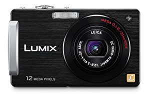 Panasonic Lumix DMC-FX580 12MP Digital Camera with 5x MEGA Optical Image Stabilized Zoom and 3 inch LCD (Black)