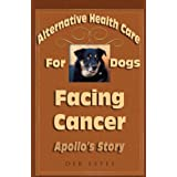 Apollo's Creed - his journey through canine cancer and beyond... ~ Deb Estes
