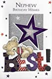 Glisten Luxury Best Nephew Birthday Card 3D Stand Up Greeting Cards Cute Bear