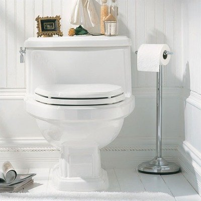 American Standard HERITAGE ONE PIECE ELONGATED VITREOUS CHINA TOILET 2071016.222