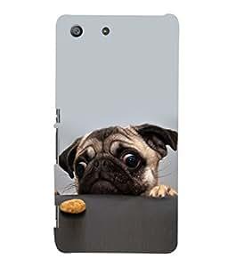 printtech Cute Dog Food Back Case Cover for Sony Xperia M5 Dual E5633 E5643 E5663:: Sony Xperia M5 E5603 E5606 E5653