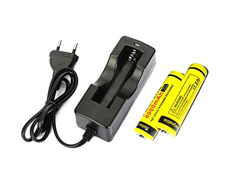 lmj-cnr-18650-cargador-y-un-par-de-4000-mah-de-la-bateria-de-ion-recargable-18650