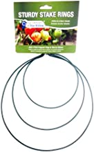 Gardener39s Blue Ribbon SS RSturdy Stake Plant Support Rings