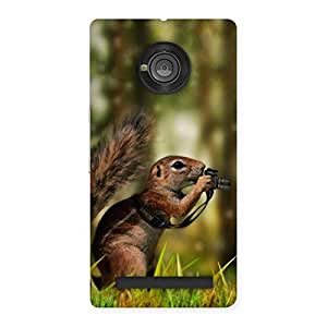 Ajay Enterprises WoSquirrel Multicolors Back Case Cover for Yu Yuphoria