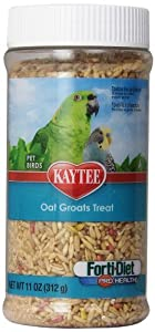 Kaytee Forti Diet Pro Health Oat Groats Treat Jar for Pets, 11-Ounce