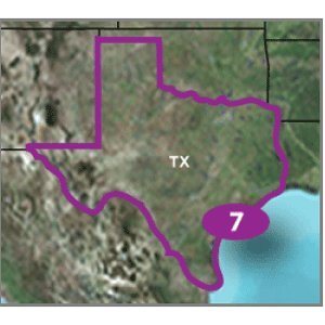 Garmin TOPO US 24K Texas Map (microSD/SD Card)