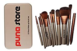 Cosmetic Makeup Brush Set - 12 Piece Set with Storage Box