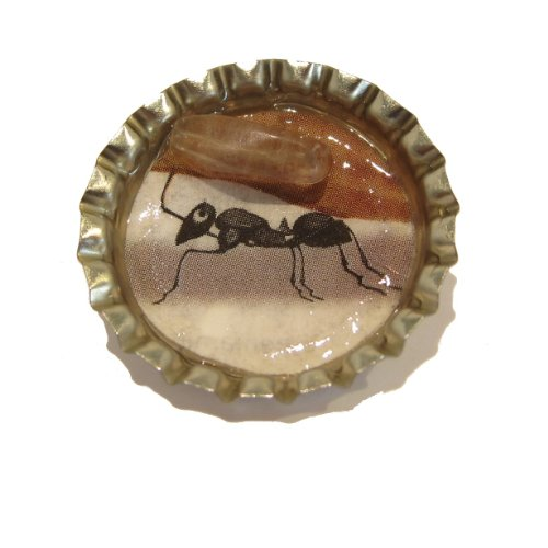 Fluorite Pin 01 Ant Bottle Cap Silver Golden Stone Art Jewelry Brooch Crystals Healing 1
