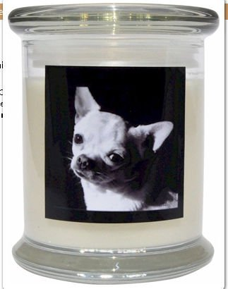 Aroma Paws 318 Breed Candle 12 Oz. Jar - Chihuahua