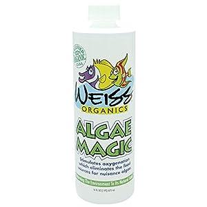 Organic Algae Magic - 16 oz.