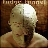 Complicated Futility of Ignora [VINYL] by Fudge Tunnel