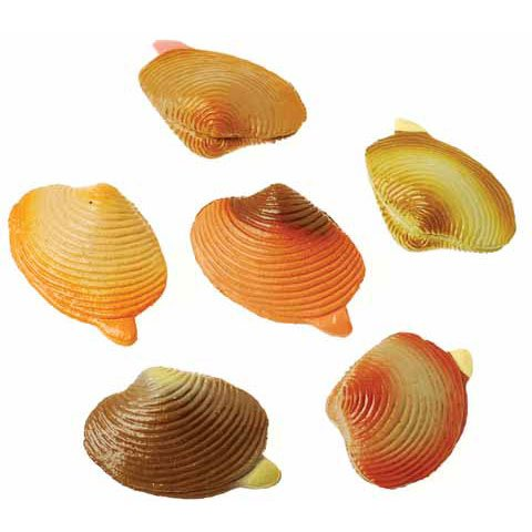 Clams Animals and Insects (48 per package)
