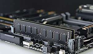 TEAMGROUP Elite DDR4 16GB Single 2666MHz (PC4-21300) CL19 Unbuffered Non-ECC 1.2V UDIMM 288 Pin PC Computer Desktop Memory Module Ram Upgrade - TED416G2666C1901 - (1x16GB) Single (Color: DDR4 Single-channel for Desktop, Tamaño: 16GB (16GBx1) - 2666MHz)