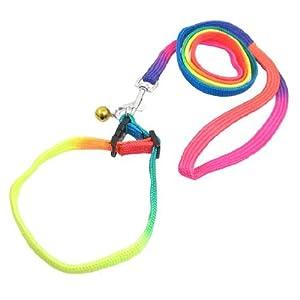 Dorado Jingle Bell Decoración Rainbow perro de nylon ajustable Correa