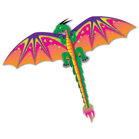 3D Nylon Dragon Kite w/Twine & Winder