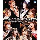 【Blu-ray】SEASIDE LIVE FES 2014
