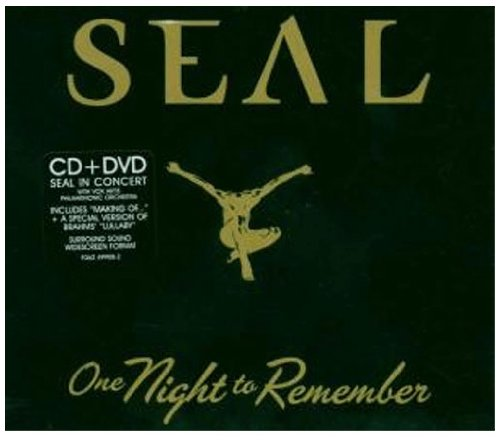 Seal - One Night To Remember - Zortam Music