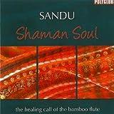 echange, troc Sandu - Shaman Soul