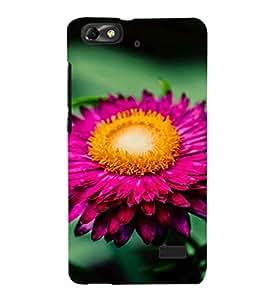 EPICCASE Pretty flower Mobile Back Case Cover For Xiaomi Redmi Mi4i (Designer Case)