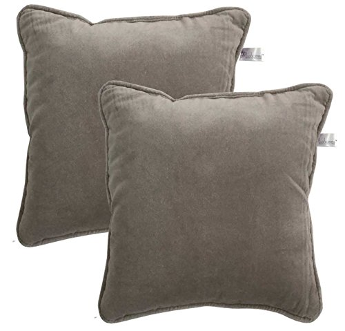 Lushomes Set Of 2 Grey Velvet Cushion Cover With Cord Piping And Top Invisible Zipper (12
