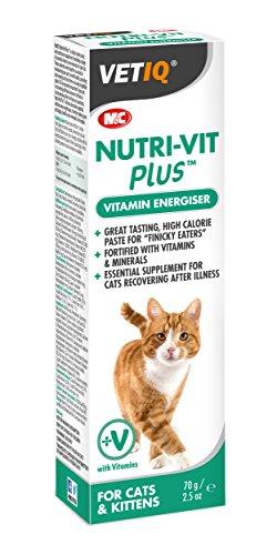 vetiq-nutri-vit-plus-cat-paste-is-a-high-calorie-vitamin-energiser-nutritional-supplement