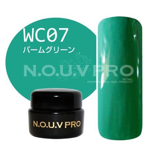 NOUV PRO カラージェル パームグリーン WC07