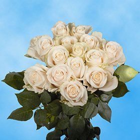 Wedding Flowers 50 Ivory Vendela Roses Wedding Bouquets