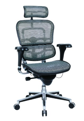 Ergohuman Me7erg - Ergohuman Executive Chair with Headrest in Gray - Ships in 24 Hours with a Lifetime Warranty!
