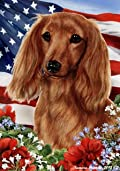 Dachshund Red Longhair Dog - Tamara Burnett Patriotic I Garden Dog Breed Flag 12'' x 17''