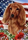 Dachshund Red Longhair Dog - Tamara Burnett Patriotic I Garden Dog Breed Flag 12'' x 17''