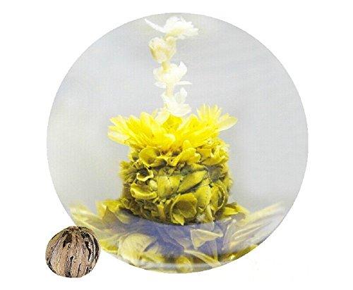 Be Oneself Fresh Flavor Natural Craft Flower Tea Blooming Jasmine Flower Tea Herb Ball Seashells Spit Bead Set Of 10 80G Unique Healthy Tea