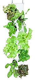 AquaVertica Vertical Growing System - 3 ft