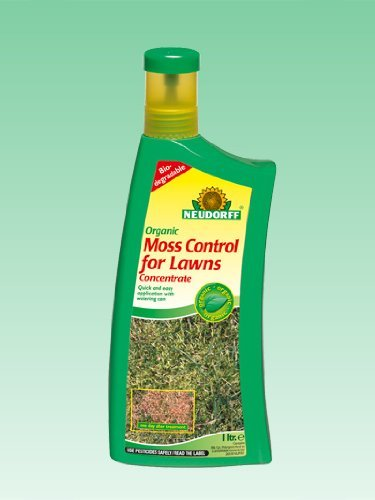 organic-moss-control-for-lawns