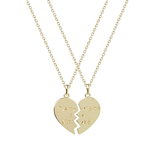 Lux Accessories Partners in Crime Valentine Heart Heart Pendant Necklaces. (2 PC)