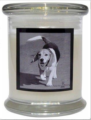 Aroma Paws 315 Breed Candle 12 Oz. Jar - Beagle