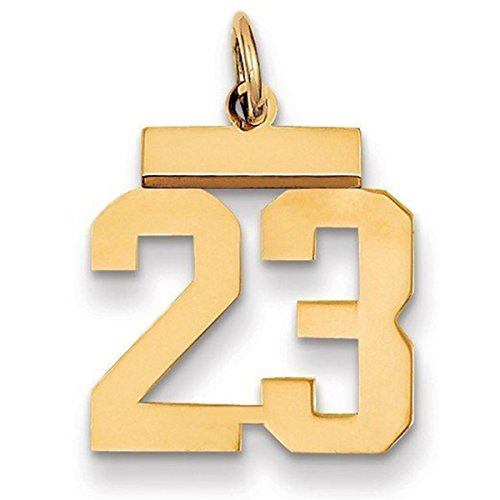 HACOOL S925 Sterling Silver & 18K Gold Plated Number Pendant Necklace & Make any Number You Want Charm Pendants 15x10mm(5/8