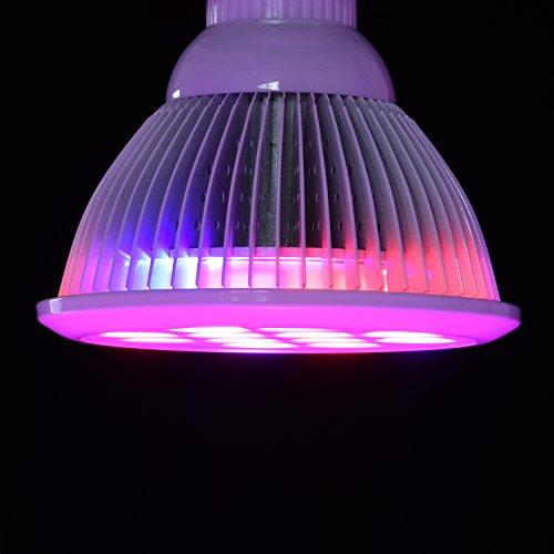 led grow light bulb oak leaf sun blaster grow plant light. Black Bedroom Furniture Sets. Home Design Ideas