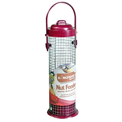 Kingfisher BF001 Standard Nut Feeder - Red