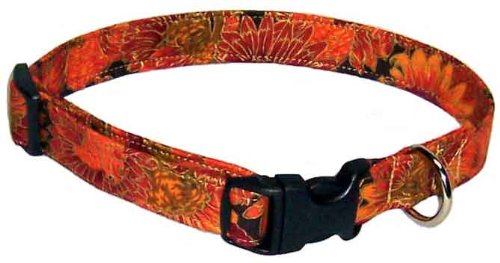 Thanksgiving Turkeys Designer Dog Collar, Small