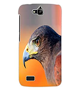ColourCraft Eagle Look Design Back Case Cover for HUAWEI HONOR HOLLY