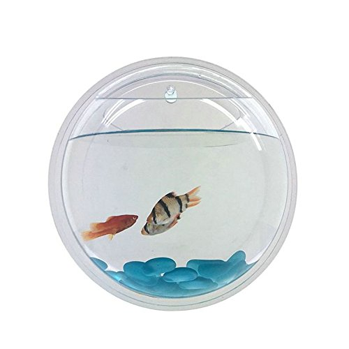 Wall Fish Tank, Acrylic Aquarium, Flower Plant Pot Aquarium, Acrylic Vase Flower Plant Pot Aquarium 15CM, Wall Mounted Bubble Aquarium Hanging Terrarium Aquarium Home Decoration (Acrylic Tank Scratch Remover compare prices)